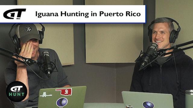 How Good is Iguana Hunting?