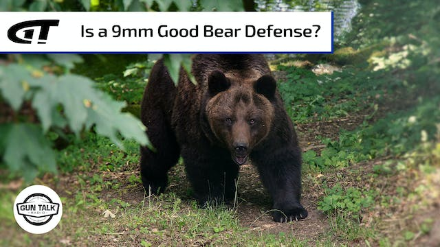 Is 9mm Enough for Bears?