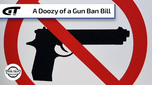 Crazy Gun Ban Legislation Introduced ...