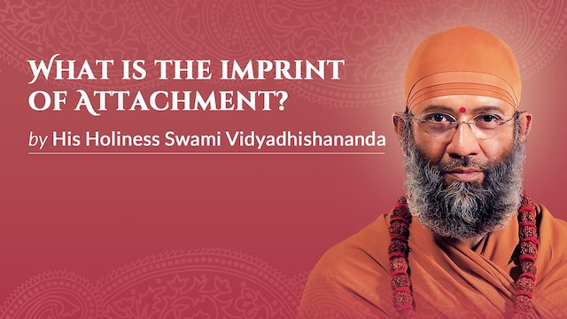 What is the Imprint of Attachment?