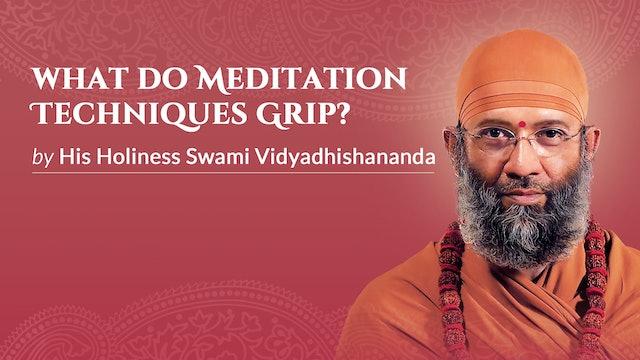 What do Meditation Techniques Grip?