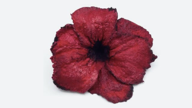 Felted Poppy