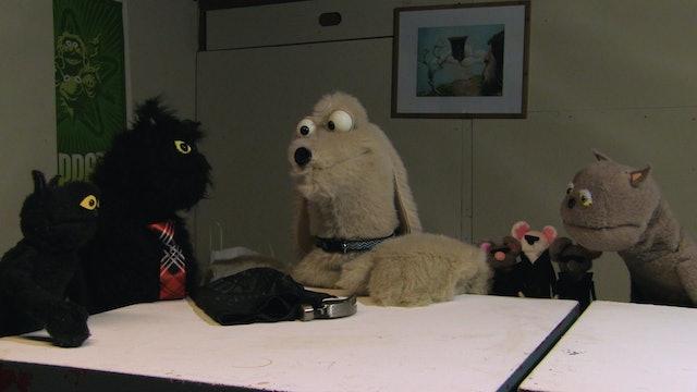 Animal Behavior Episode 11