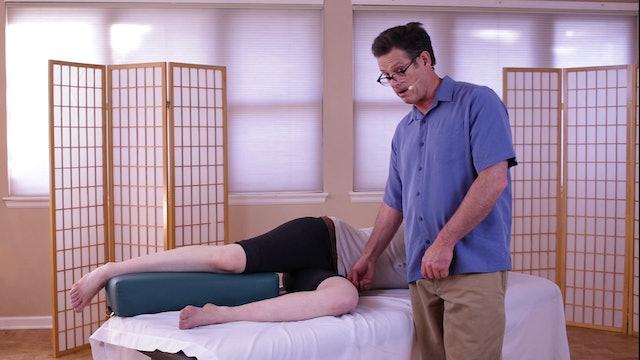 Knee X. Supplemental Techniques - Til Luchau