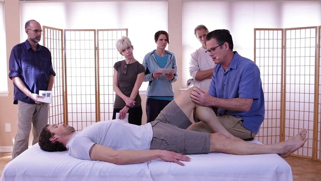 Knee A. Fascial Preparation - Til Luchau