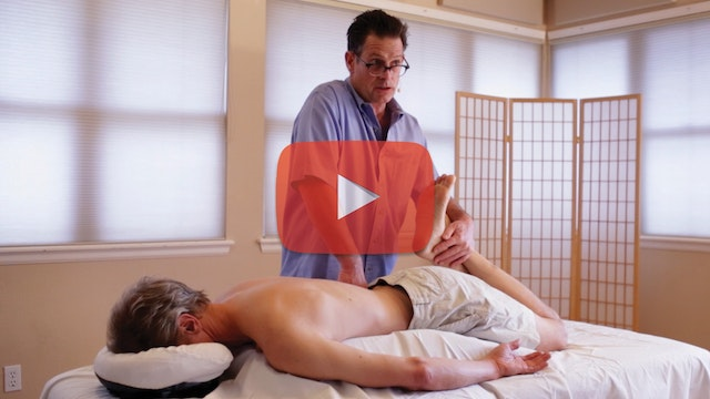 SCIATICA & DISC ISSUES HD Video Package