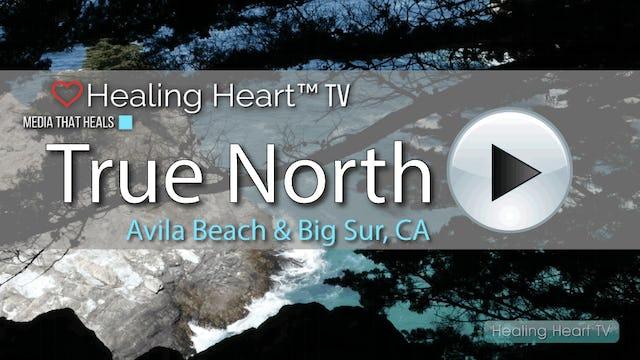 Episode #1 True North