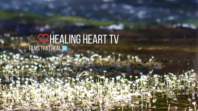 Healing Heart™ TV Subscription