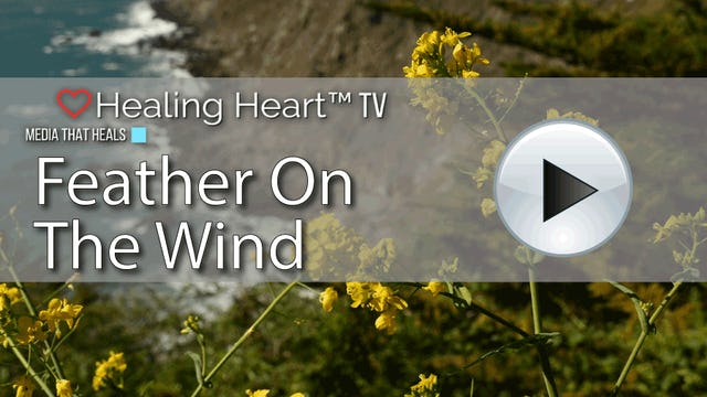 Episode #5 Feather On The Wind