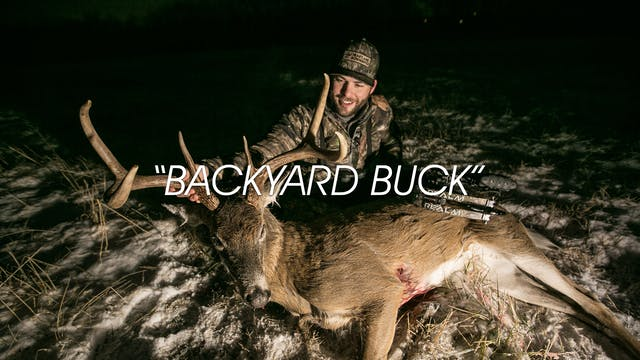 HB13.13 | Backyard Buck
