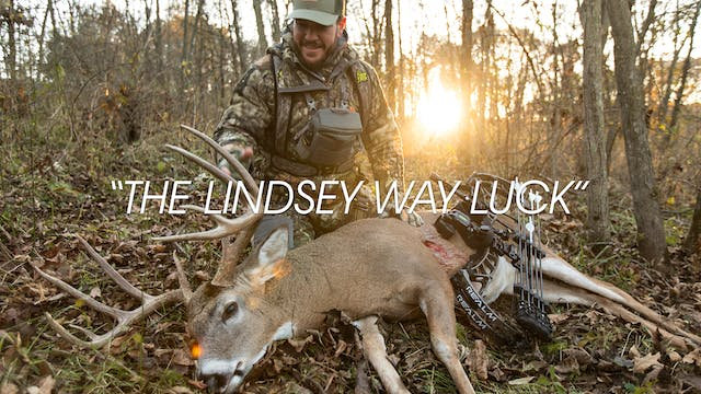 HB13.8 | THE LINDSEY WAY LUCK