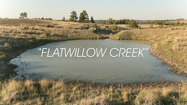 HB13.4 | Flatwillow Creek