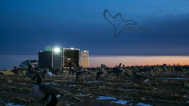 "Heartland Waterfowl 4.6 - ""MILE HIGH"""