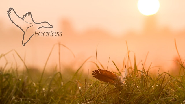 "HEARTLAND WATERFOWL | 5.2 | ""Fearless"""