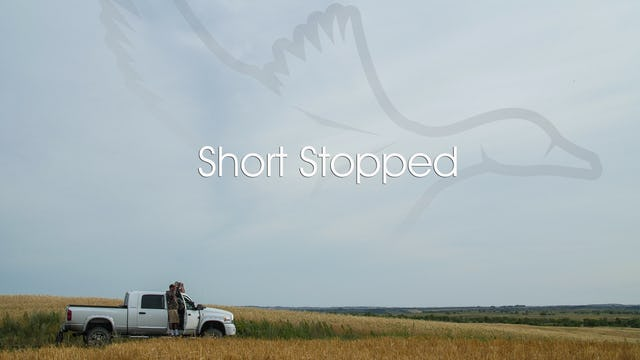 "Heartland Waterfowl 3.1 ""Short Stopped"""