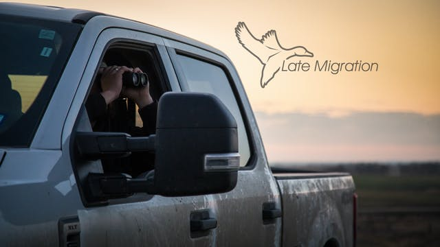 "Heartland Waterfowl 4.7 - ""LATE MIGRA..."