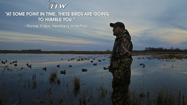 "Heartland Waterfowl 2.4 ""Humbled"""