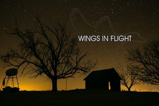 """Heartland Waterfowl 3.10 - """"Wings In Flight"""""""