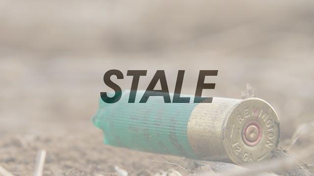 HW6.11 STALE