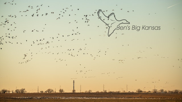 "Heartland Waterfowl 4.8 - ""BEN'S BIG KANSAS"""