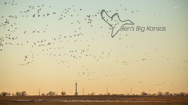 "Heartland Waterfowl 4.8 - ""BEN'S BIG ..."