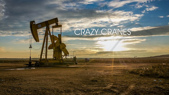 "Heartland Waterfowl 3.7 - ""Crazy Cranes"""