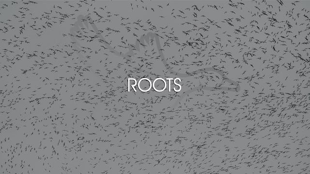 "Heartland Waterfowl 3.8 - ""Roots"""