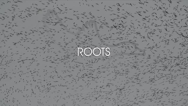 "Heartland Waterfowl 3.8 - ""Roots"""