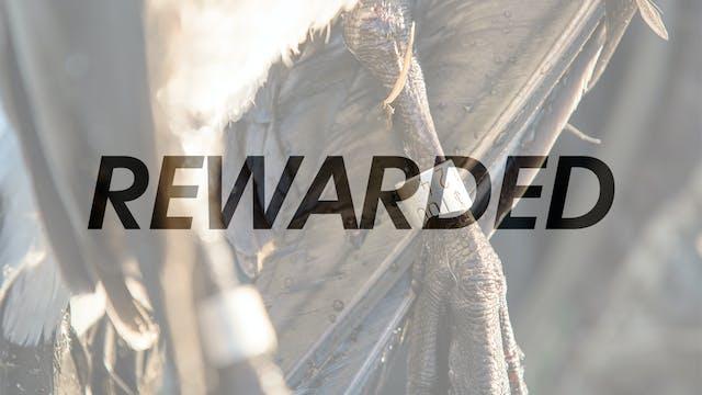 HW6.6 REWARDED