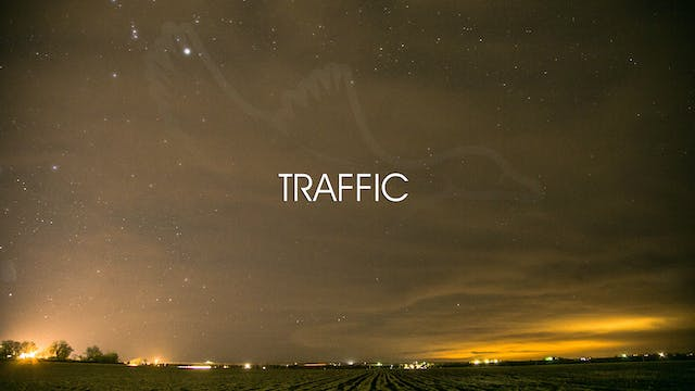 "Heartland Waterfowl 3.5 - ""Traffic"""