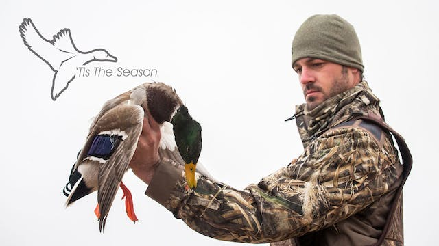 "HEARTLAND WATERFOWL | 5.7 | ""Tis The Season"""