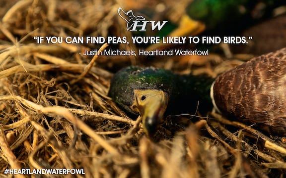"Heartland Waterfowl 2.5 ""The Peas Knees"""