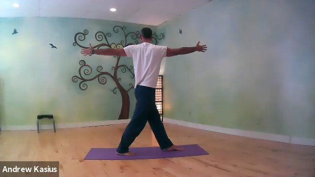 Vinyasa Flow with Andrew: Twists and Backbends