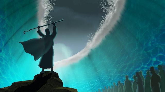 COMING OF DIASPORA: THE 2ND EXODUS