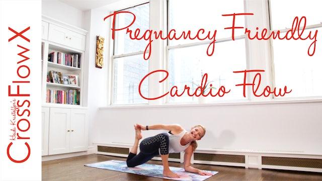CrossFlowX™: Pregnancy Friendly Cardio Flow