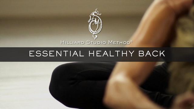 Essential Healthy Back