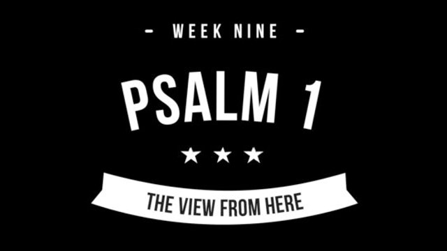 Downloadable PDF Week 9 - Kingdom Perspective