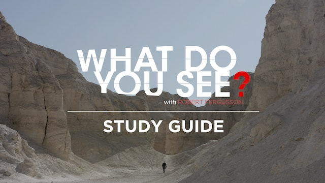 What Do You See - Study Guide