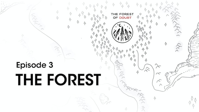 Study Guide Week 3 - The Forest