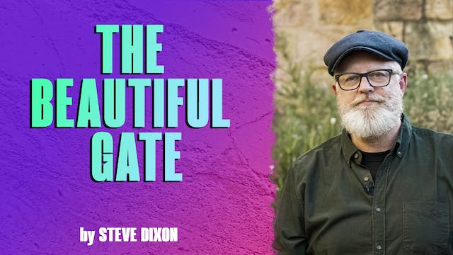 The Beautiful Gate by Steve Dixon