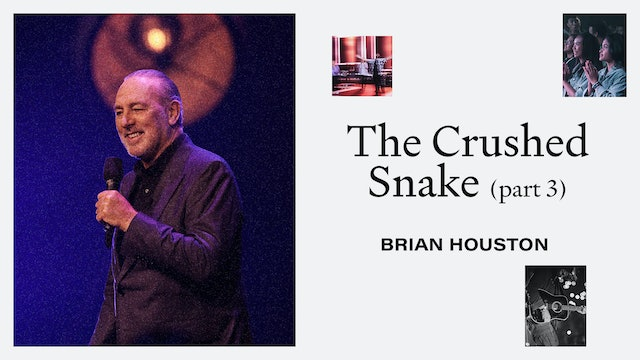 The Crushed Snake Pt.3 by Brian Houston