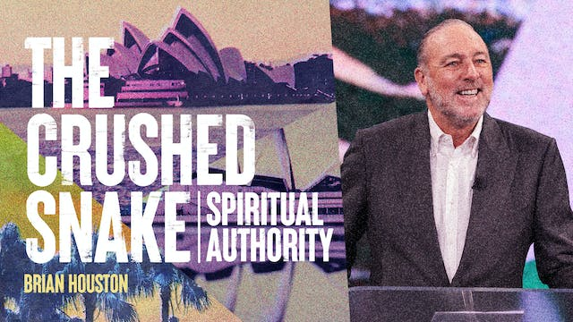 The Crushed Snake by Brian Houston