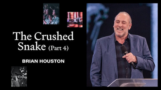 The Crushed Snake Pt.4 by Brian Houston