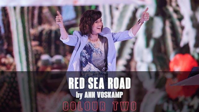 Red Sea Road by Ann Voskamp