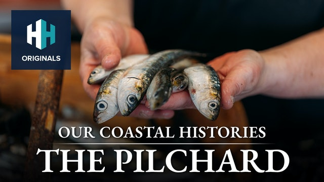 The Pilchard