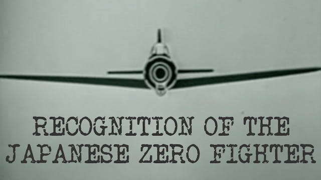 Recognition of the Japanese Zero