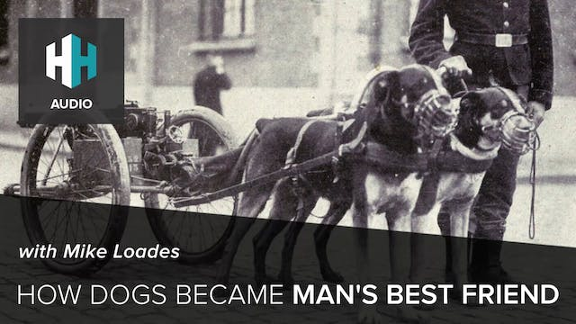 🎧 How Dogs Became Man's Best Friend