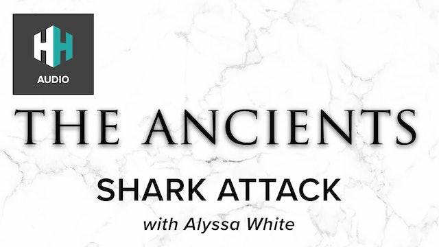🎧 Shark Attack