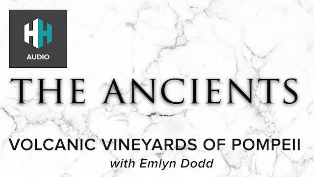 🎧 Volcanic Vineyards of Pompeii