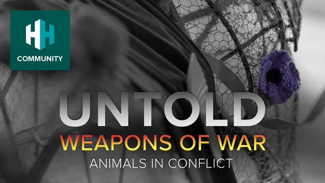 Animals in Conflict